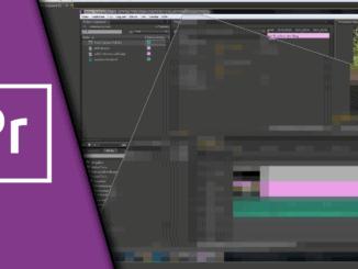 Adobe Premiere Verpixeln