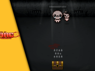 The Binding of Isaac Coop